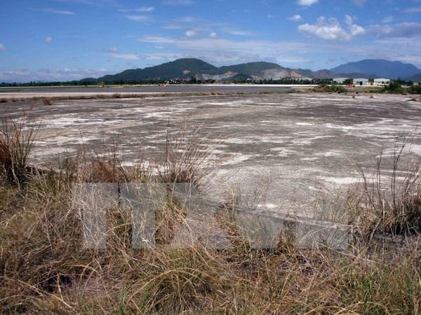 Vietnam y Estados Unidos cooperan en alivio de secuelas de dioxina hinh anh 1