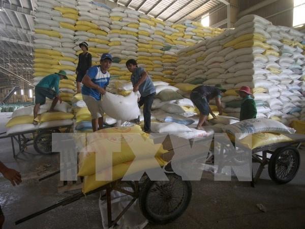 Arroz vietnamita por penetrar al mercado frances hinh anh 1