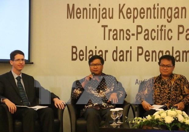 Vietnam comparte experiencias en TPP con Indonesia hinh anh 1