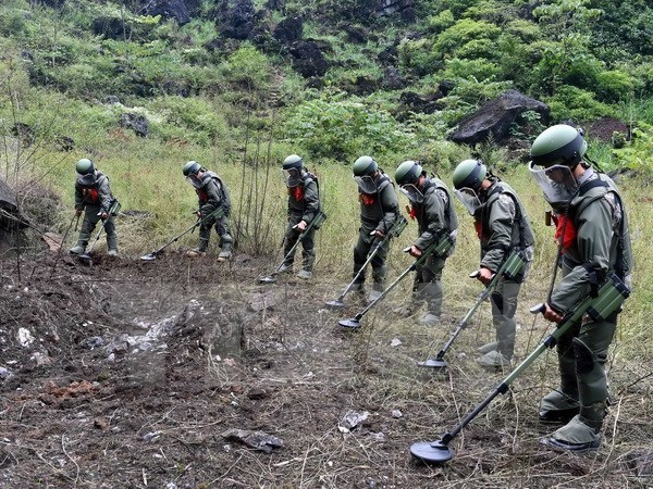 Descontaminacion de tierras con bombas en Vietnam: tarea centenaria costosa hinh anh 1