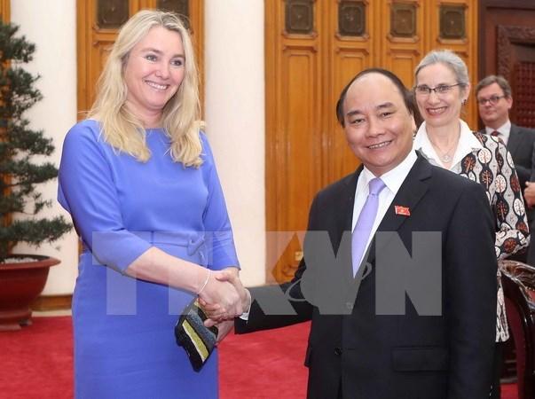 Vietnam quiere estudiar experiencias holandesas en respuesta a cambio climatico hinh anh 1