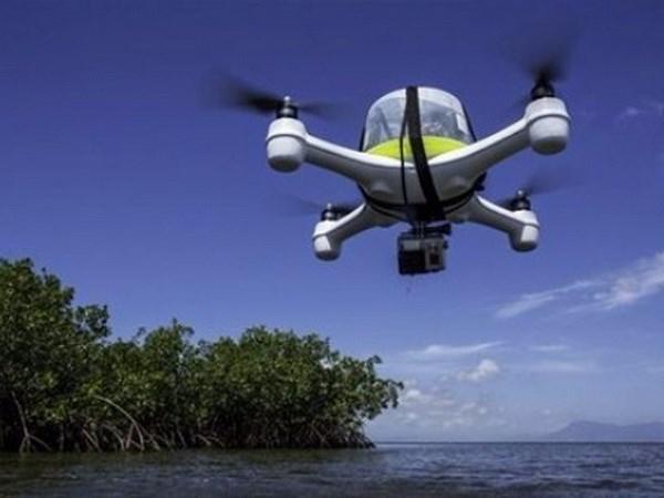 Un avion no tripulado extranjero cae al mar de Indonesia hinh anh 1