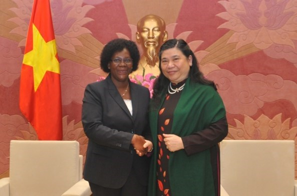 Vietnam y Mozambique forjan lazos legislativos hinh anh 1