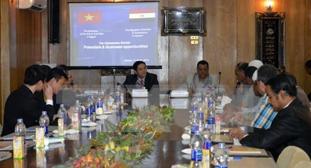 Promueven comercio e inversion entre Vietnam y Egipto hinh anh 1