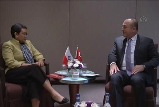 Indonesia y Turquia potencian cooperacion economica y lucha antiterrorista hinh anh 1