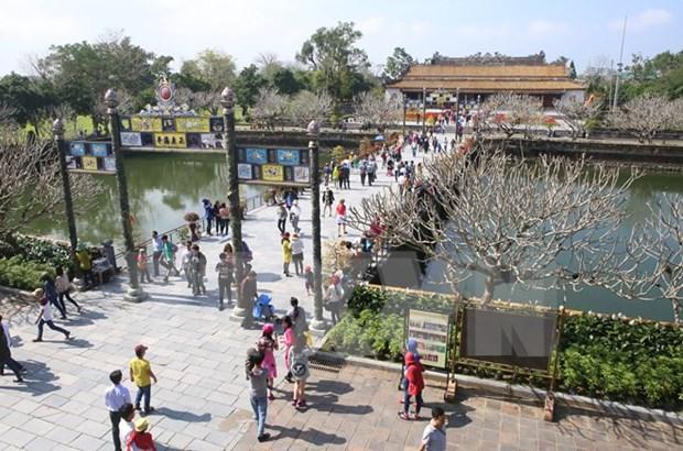 Ofreceran miles de paquetes turisticos de bajo costo en Vietnam hinh anh 1