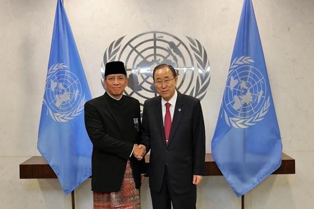Indonesia promueve su papel en las Naciones Unidas hinh anh 1