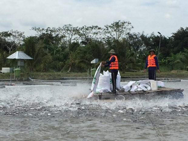 Foro de Cooperacion Economica del Delta de Mekong tendra lugar en julio hinh anh 1