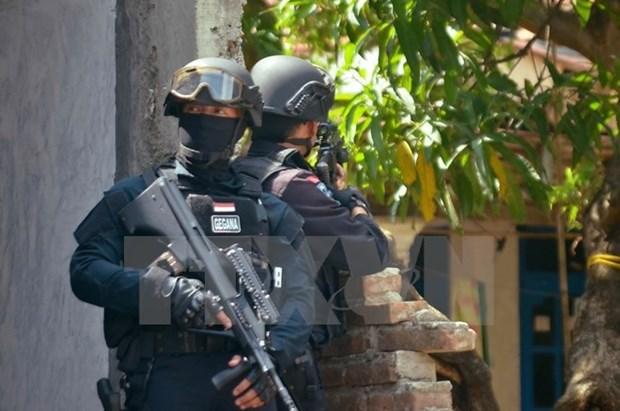 Indonesia aumenta presupuesto para programa antiterrorista hinh anh 1