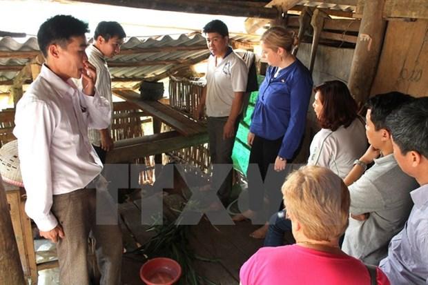 Buen resultado de asistencia irlandesa a provincia montanosa vietnamita hinh anh 1