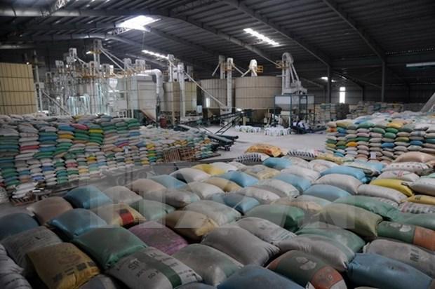 Exportacion de arroz crecera 12 por ciento en primera mitad del ano hinh anh 1