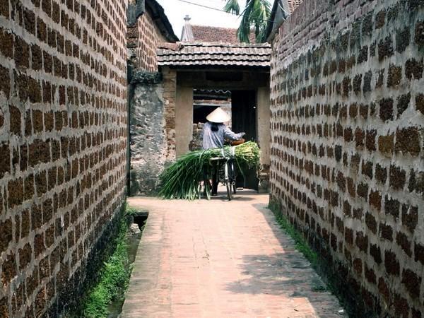 Turismo comunitario contribuye a preservacion de aldea antigua hinh anh 1