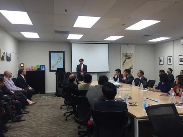 Robustecen cooperacion empresarial Vietnam-Nueva Zelanda hinh anh 1