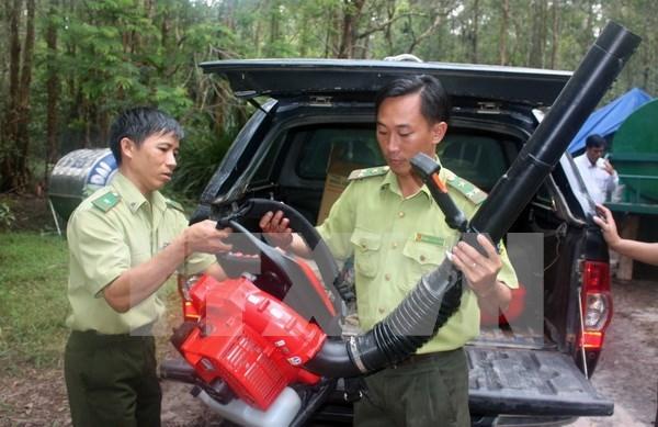 Mas de 20 mil hectareas de bosque se encuentran en maxima alerta de incendios hinh anh 1