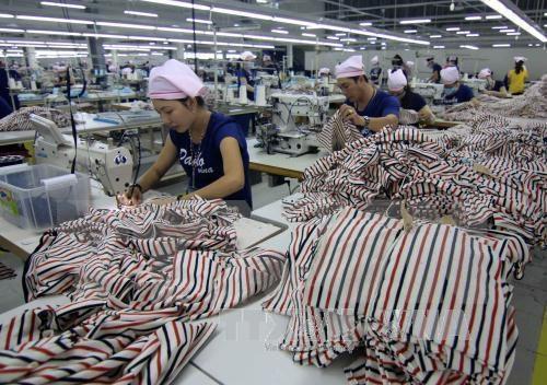 TPP: ventaja para avance en general de confeccion pero reto para empresas domesticas hinh anh 1
