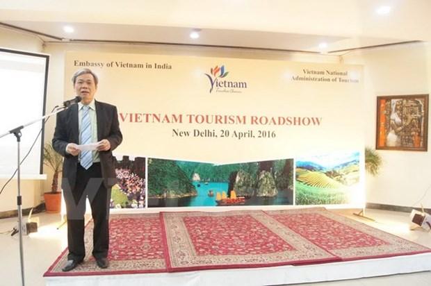 Vietnam intensifica promocion turistica en la India hinh anh 1
