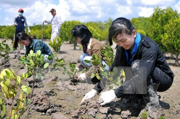 UE mantendra ayuda a Vietnam para mitigar impactos del cambio climatico hinh anh 1