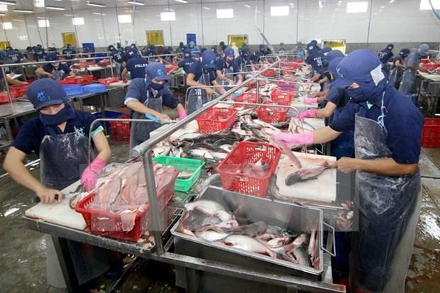 Exportaciones acuaticas totalizan 1,4 mil millones de USD en primer trimestre hinh anh 1
