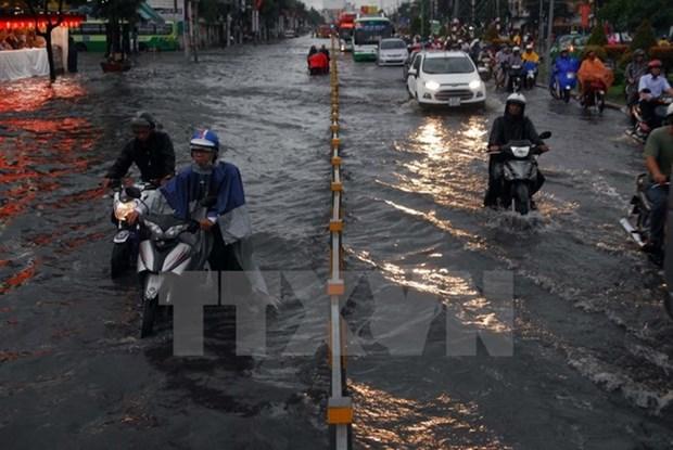 Ciudad Ho Chi Minh aumenta inversion en lucha contra inundacion hinh anh 1