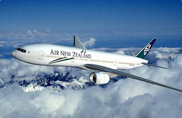 Lanzan concurso en saludo a nueva ruta aerea Nueva Zelanda-Vietnam hinh anh 1