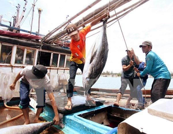 Fijan reglas para envio de trabajadores vietnamitas a Tailandia hinh anh 1
