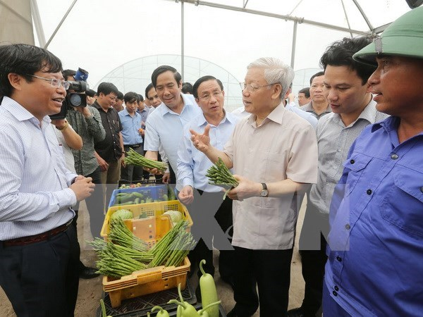 Lider partidista exhorta a Ha Tinh a concentrarse en el desarrollo sostenible hinh anh 1