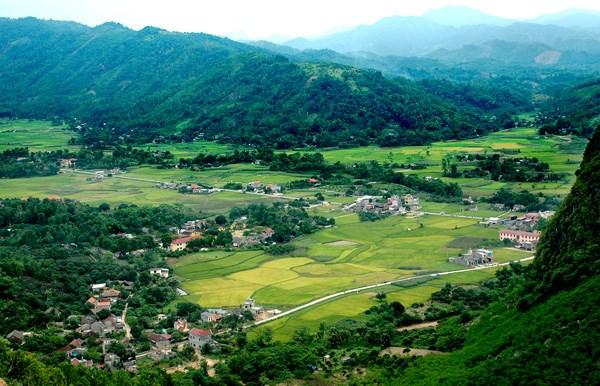 Habitat respalda proyecto a favor de hogares pobres en Vietnam hinh anh 1