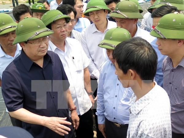Vicepremier exige detectar causas de muerte masiva de peces en Ha Tinh hinh anh 1