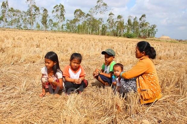 Vietnam llama a apoyo internacional urgente para enfrentar desastres naturales hinh anh 1