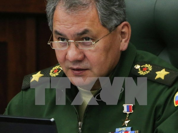 Rusia y ASEAN por fomentar lazos en defensa hinh anh 1