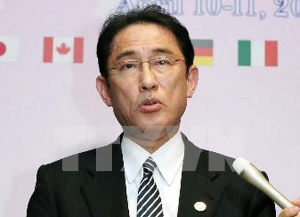 Canciller japones declara su apoyo a Comunidad Economica de ASEAN hinh anh 1