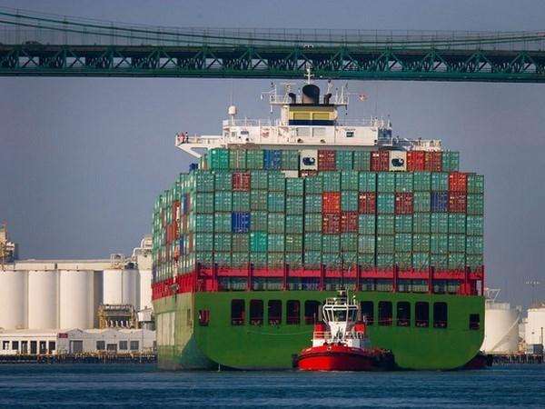 Vietnam advierte sobre amenazas de pirateria maritima hinh anh 1