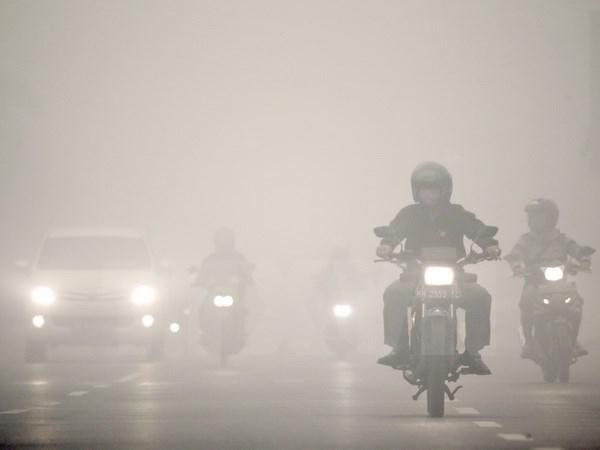 """Esfuerzos contra fenomeno """"Smog"""" en subregion de ASEAN hinh anh 1"""