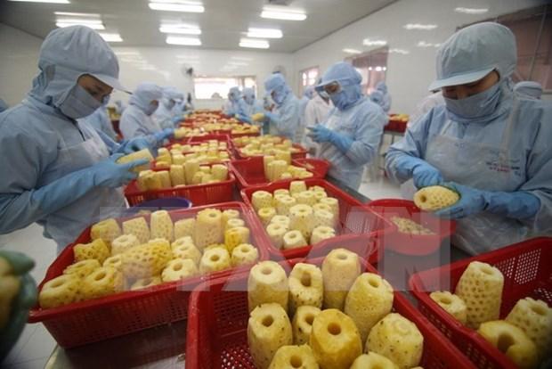 Vietnam por promover integracion economica y desarrollo del sector agricola hinh anh 1