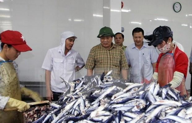 Quang Tri presta ayuda a afectados por muerte masiva de peces hinh anh 1
