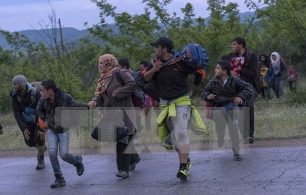 Vietnam asiste a la feria de apoyo a refugiados sirios hinh anh 1