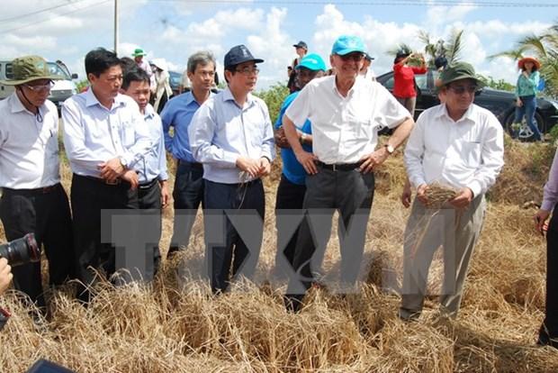 Alto funcionario de ONU examina situacion de sequia en provincia vietnamita hinh anh 1