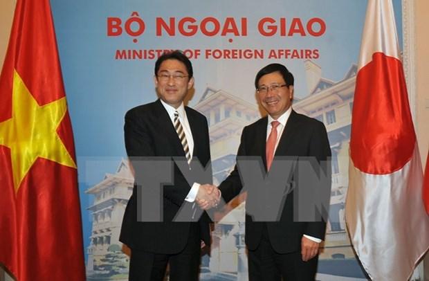 Vietnam y Japon acuerdan incrementar la confianza politica hinh anh 1