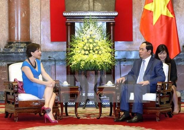 Presidente vietnamita se pronuncia por expandir cooperacion con Italia hinh anh 1