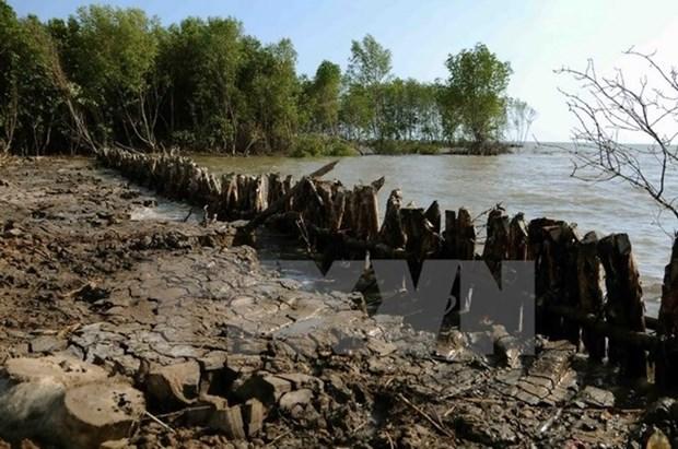 Gobierno proporciona asistencia a provincias afectadas por salinizacion hinh anh 1
