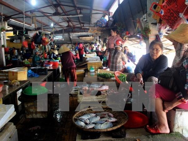 Asistencia urgente en Vietnam a pobladores afectados por muerte masiva de peces hinh anh 1