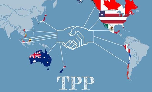 Gobierno vietnamita presentara TPP a la Asamblea Nacional hinh anh 1