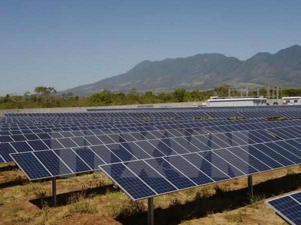 Elabora Vietnam mecanismos para incentivar el desarrollo de energia solar hinh anh 1