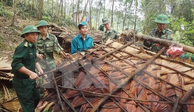 Vietnam realiza maniobra de respuesta a desastres hinh anh 1