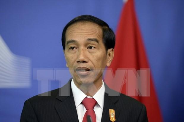 Indonesia impulsa los lazos con Sudcorea y Rusia hinh anh 1
