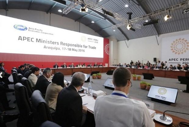 Ministros de comercio de APEC se reunen en Peru hinh anh 1