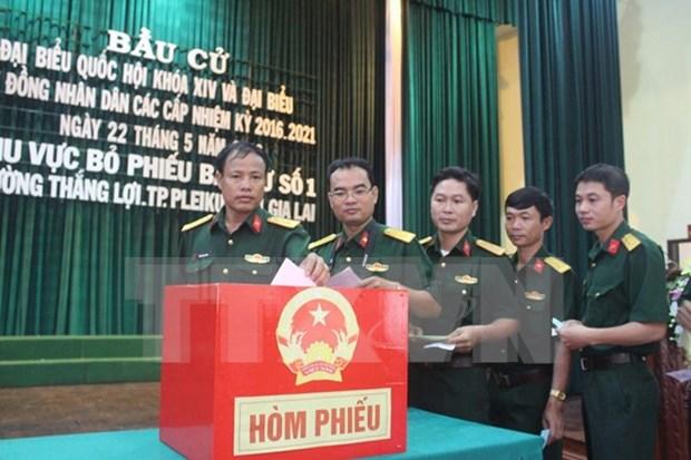 Vota el 95,84 % del electorado vietnamita, segun cifra actualizada hasta 17:00 hinh anh 1