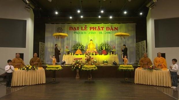 Vietnamitas en Ucrania y Republica Checa celebran el Dia de Vesak hinh anh 1