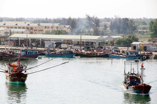 Thua Thien-Hue asiste a pescadores afectados por muerte masiva de peces hinh anh 1