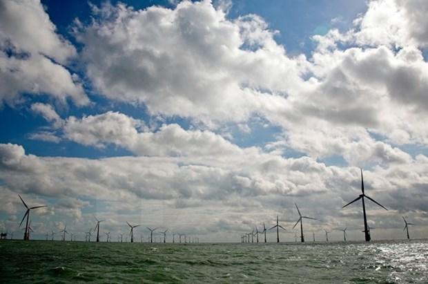 Energia renovable como futuro de industria electrica de Vietnam hinh anh 1